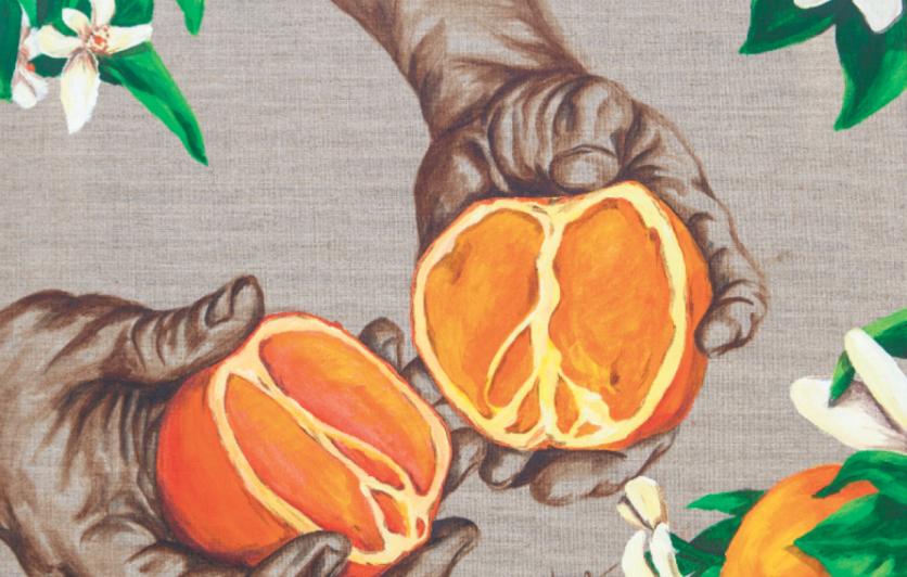 Oranges by Hugo Medina