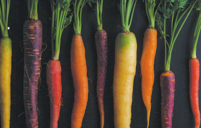 Carrots in all colors