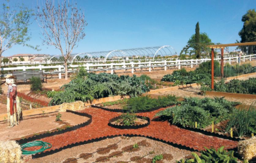 Community Gardens at Agritopia