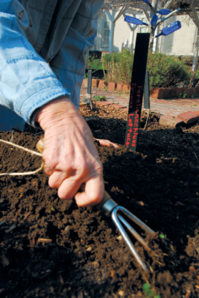 Tilling the soil