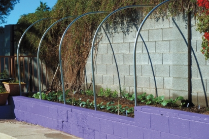 chicken wire enclosure for vegetable garden