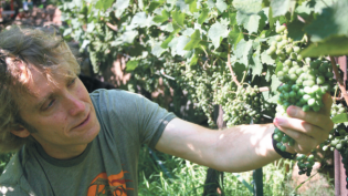 Eric Glomski, winemaker Page Spring Cellars
