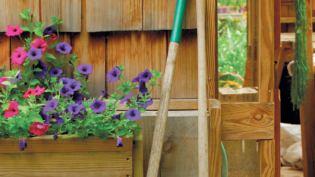 garden shed, two shovels