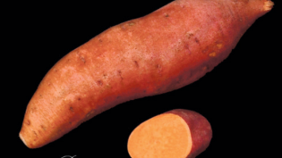 Diana Sweet Potato